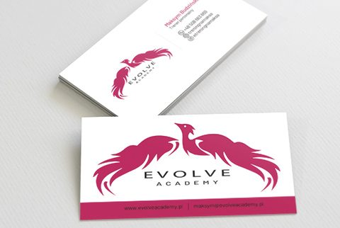 evolve_miniatura